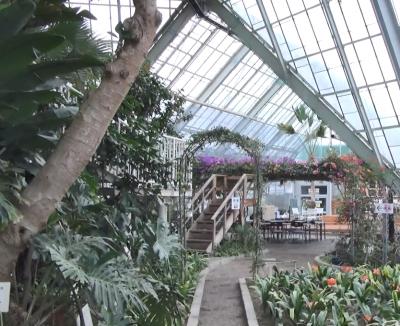 函館熱帯植物園2