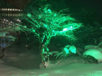 啄木亭中庭ライトアップ